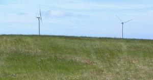 Tuulivoima_uusikaupunki